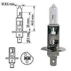 Ampoule H1 12V